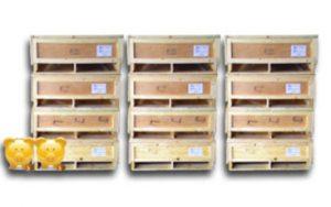 cajas de madera en grandes cantidades